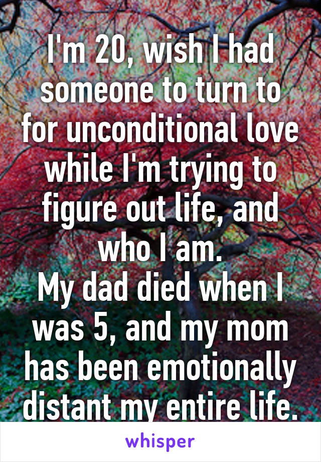 I'm 20, wish I had someone to turn to for unconditional love while I'm trying to figure out life, and who I am. My dad died when I was 5, and my mom has been emotionally distant my entire life.