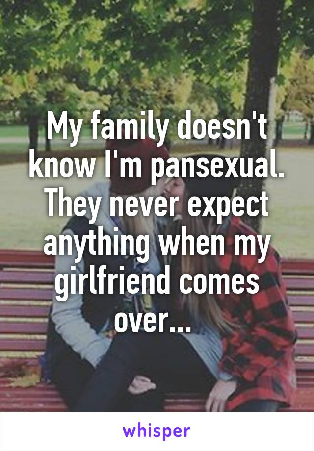 My family doesn't know I'm pansexual. They never expect anything when my girlfriend comes over...