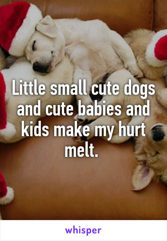 Little small cute dogs and cute babies and kids make my hurt melt.