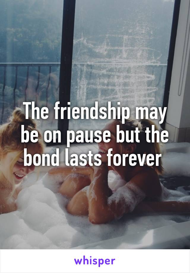 The friendship may be on pause but the bond lasts forever