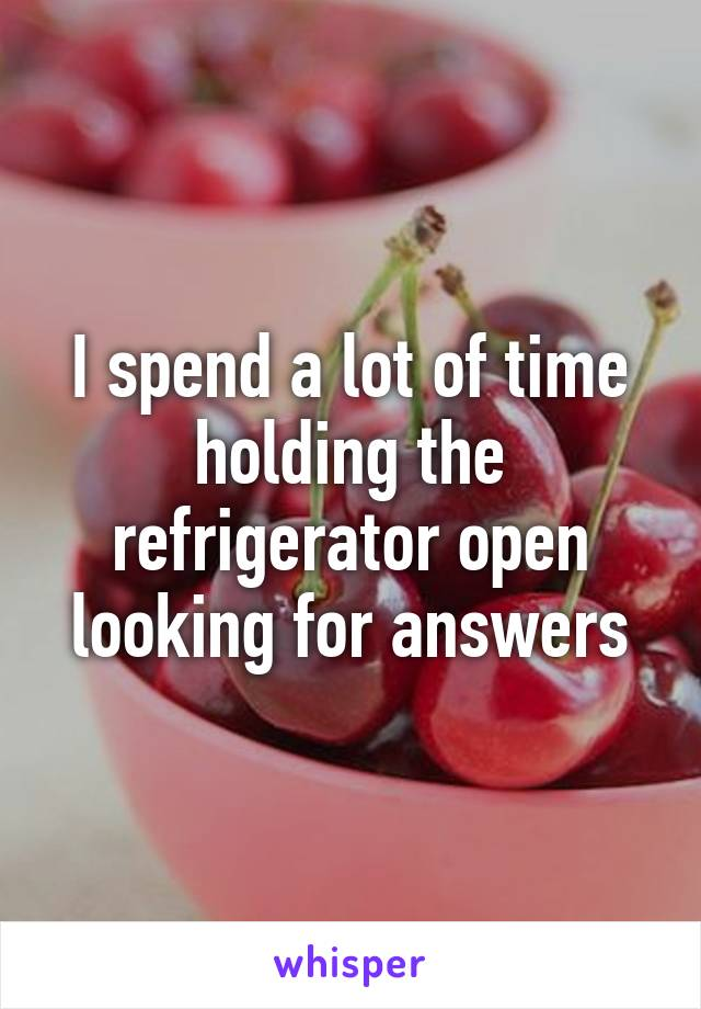 I spend a lot of time holding the refrigerator open looking for answers