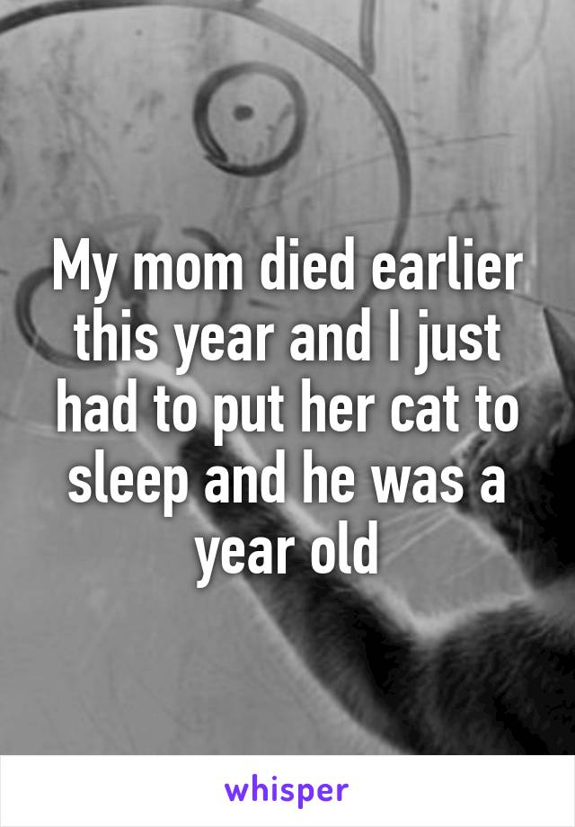 My mom died earlier this year and I just had to put her cat to sleep and he was a year old