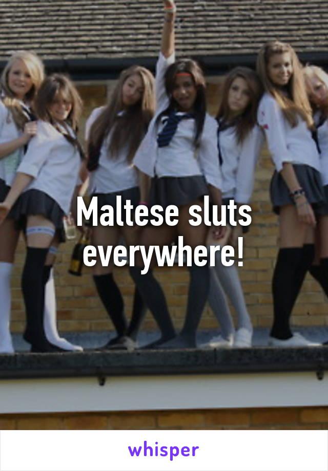 Maltese sluts