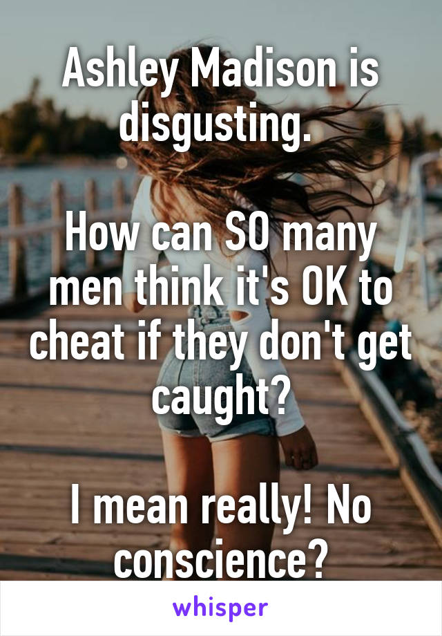 Ashley Madison is disgusting.   How can SO many men think it's OK to cheat if they don't get caught?  I mean really! No conscience?