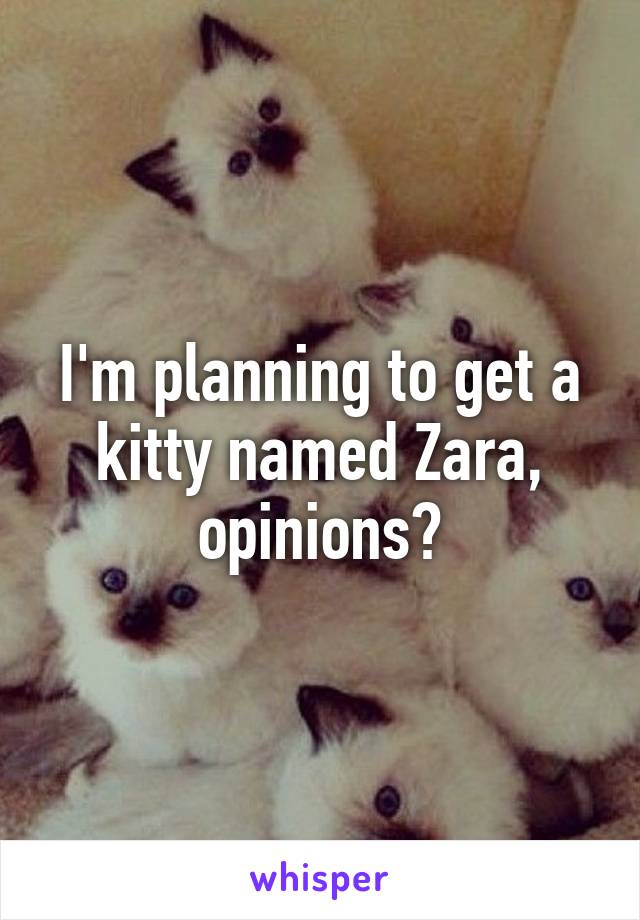 I'm planning to get a kitty named Zara, opinions?