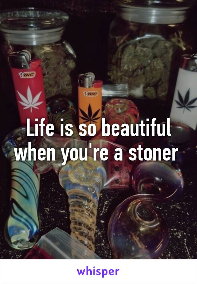 Life is so beautiful when you're a stoner