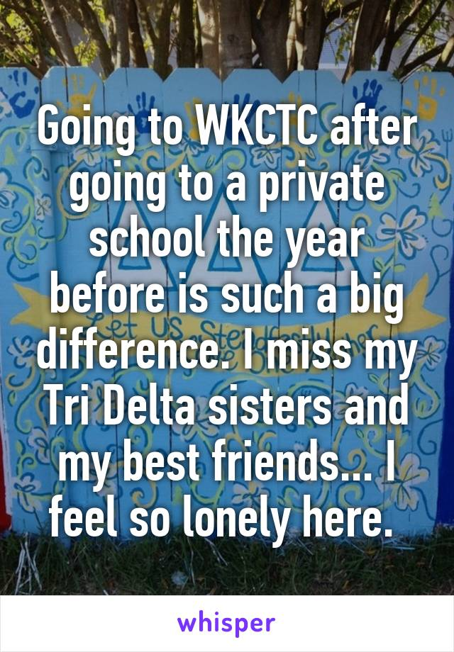 Going to WKCTC after going to a private school the year before is such a big difference. I miss my Tri Delta sisters and my best friends... I feel so lonely here.