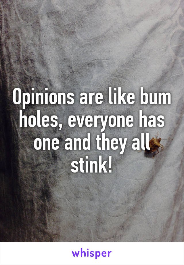 Opinions are like bum holes, everyone has one and they all stink!