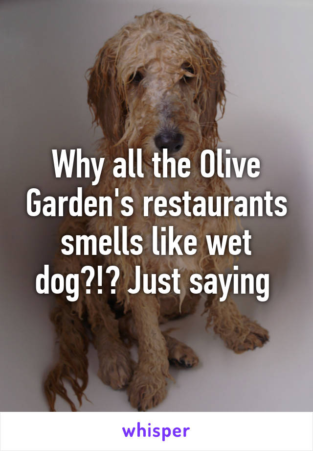 Why all the Olive Garden's restaurants smells like wet dog?!? Just saying