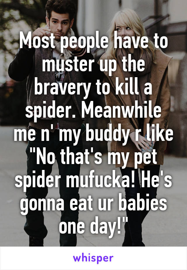 """Most people have to muster up the bravery to kill a spider. Meanwhile me n' my buddy r like """"No that's my pet spider mufucka! He's gonna eat ur babies one day!"""""""