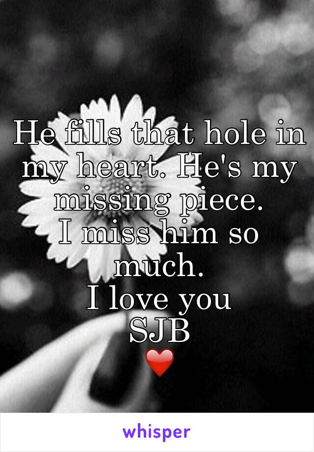 He fills that hole in my heart. He's my missing piece.  I miss him so much.  I love you SJB ❤️