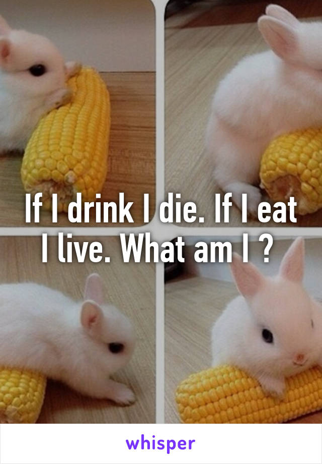 If I drink I die. If I eat I live. What am I ?