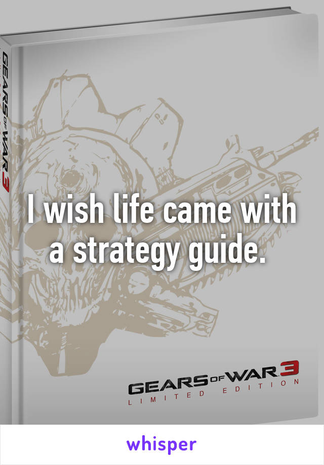I wish life came with a strategy guide.