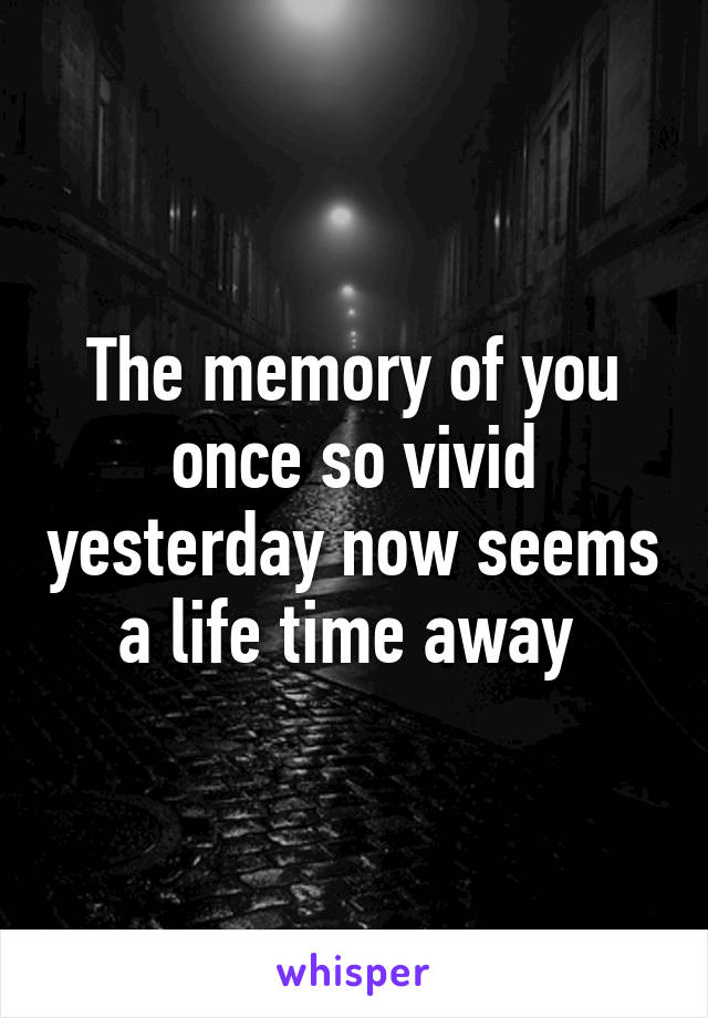 The memory of you once so vivid yesterday now seems a life time away