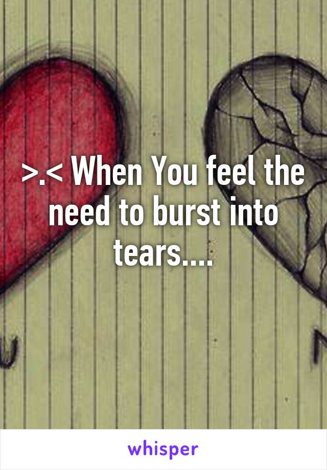 >.< When You feel the need to burst into tears....