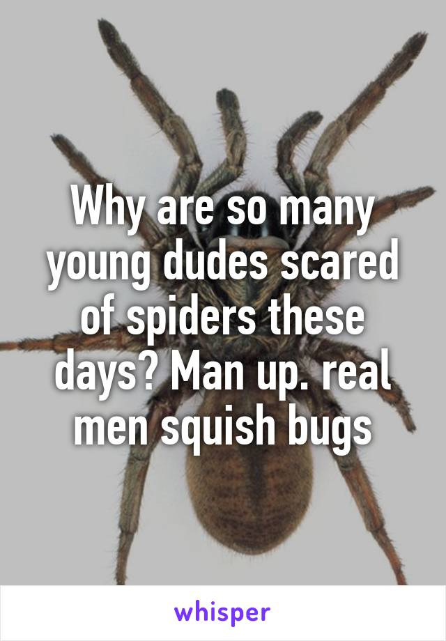 Why are so many young dudes scared of spiders these days? Man up. real men squish bugs