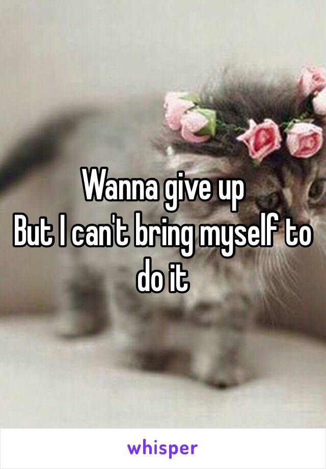 Wanna give up  But I can't bring myself to do it
