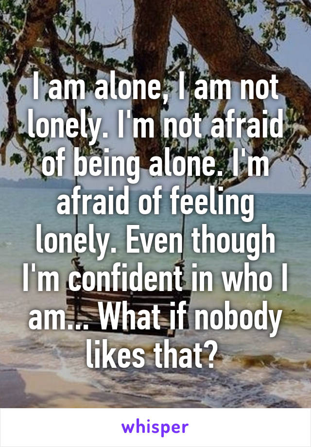 I am alone, I am not lonely. I'm not afraid of being alone. I'm afraid of feeling lonely. Even though I'm confident in who I am... What if nobody likes that?