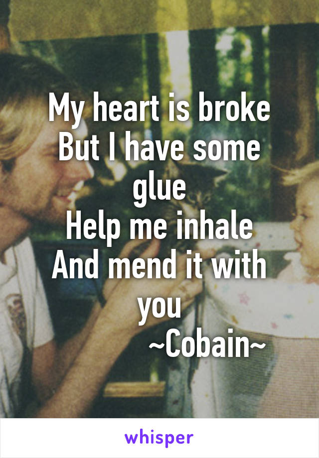 My heart is broke But I have some glue Help me inhale And mend it with you             ~Cobain~