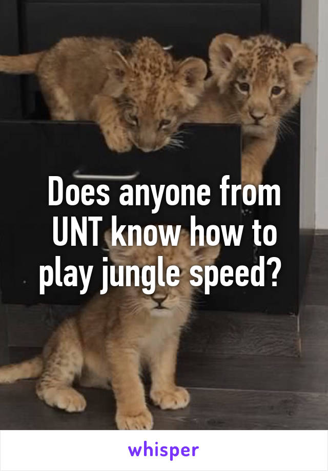 Does anyone from UNT know how to play jungle speed?