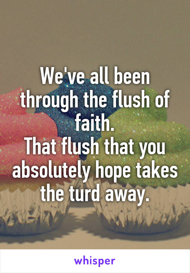 We've all been through the flush of faith. That flush that you absolutely hope takes the turd away.