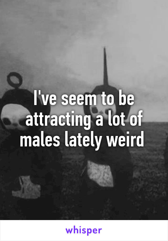 I've seem to be attracting a lot of males lately weird
