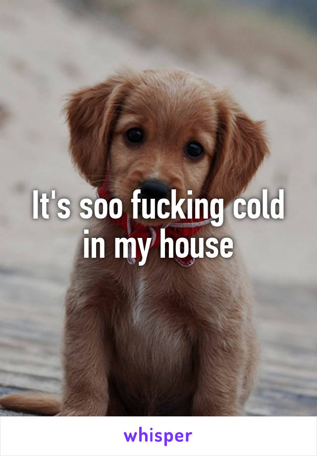 It's soo fucking cold in my house