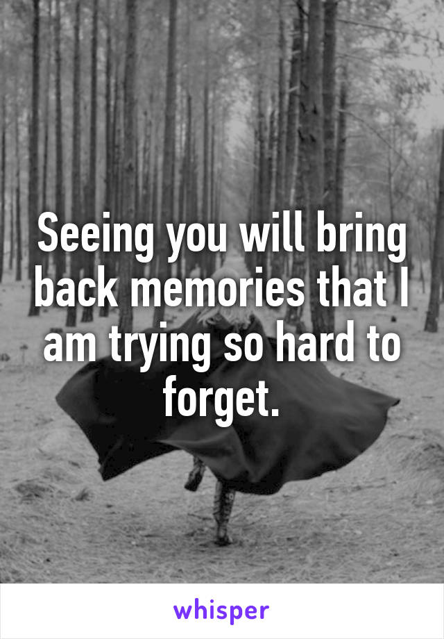 Seeing you will bring back memories that I am trying so hard to forget.