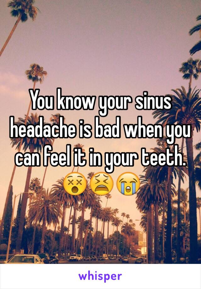 You know your sinus headache is bad when you can feel it in your teeth. 😵😫😭