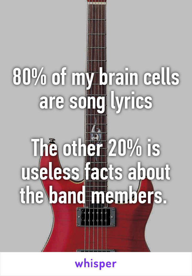 80% of my brain cells are song lyrics  The other 20% is useless facts about the band members.
