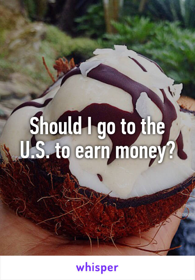 Should I go to the U.S. to earn money?