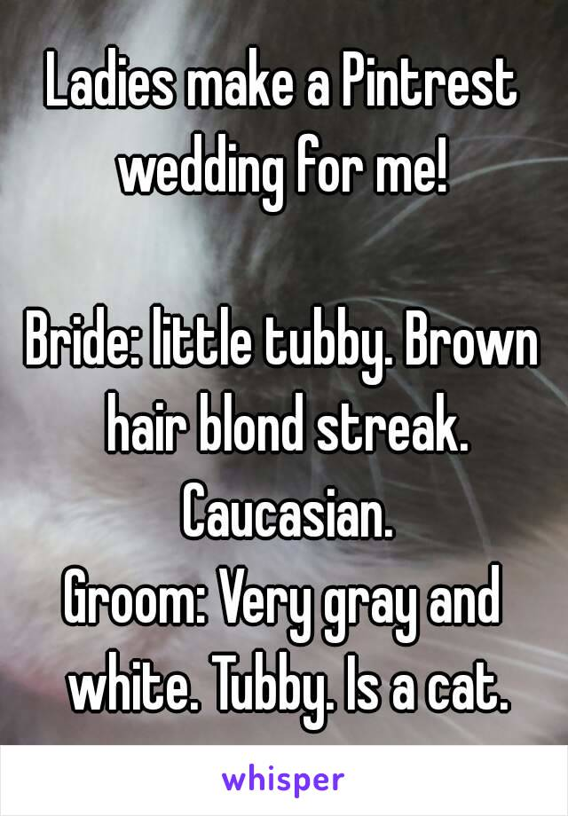 Ladies make a Pintrest wedding for me!   Bride: little tubby. Brown hair blond streak. Caucasian. Groom: Very gray and white. Tubby. Is a cat.