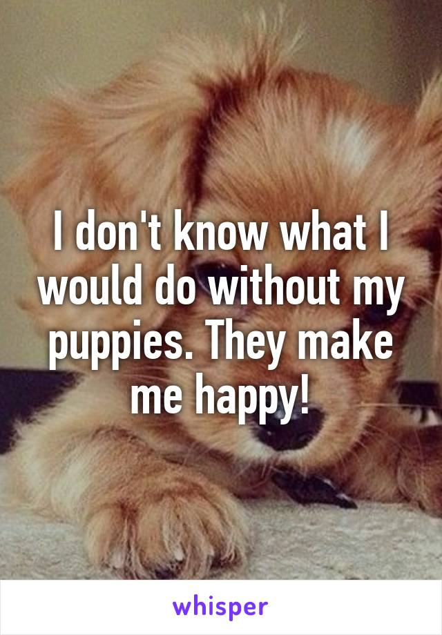 I don't know what I would do without my puppies. They make me happy!