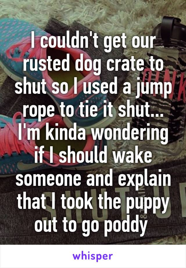 I couldn't get our rusted dog crate to shut so I used a jump rope to tie it shut... I'm kinda wondering if I should wake someone and explain that I took the puppy out to go poddy