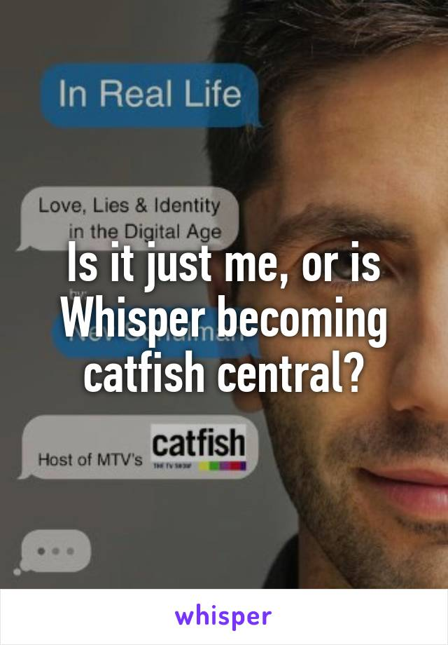Is it just me, or is Whisper becoming catfish central?