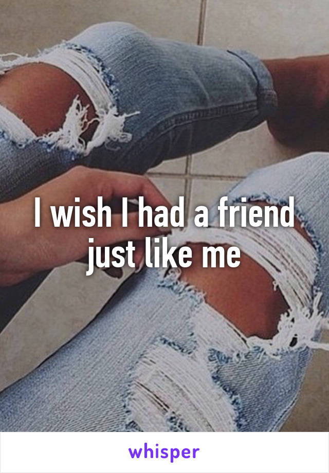 I wish I had a friend just like me