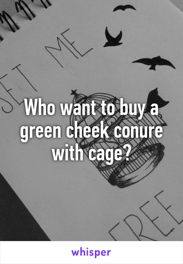 Who want to buy a green cheek conure with cage?