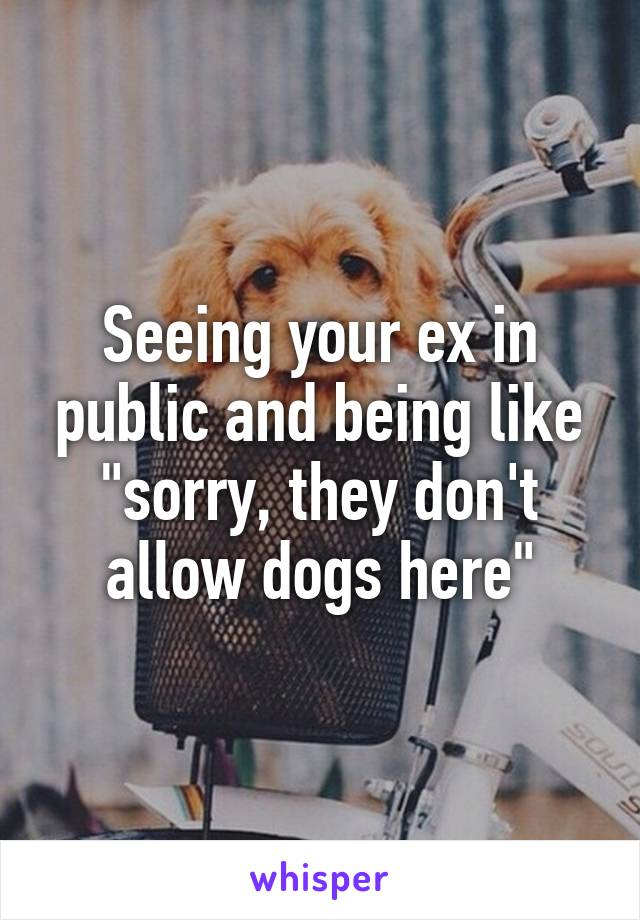 """Seeing your ex in public and being like """"sorry, they don't allow dogs here"""""""