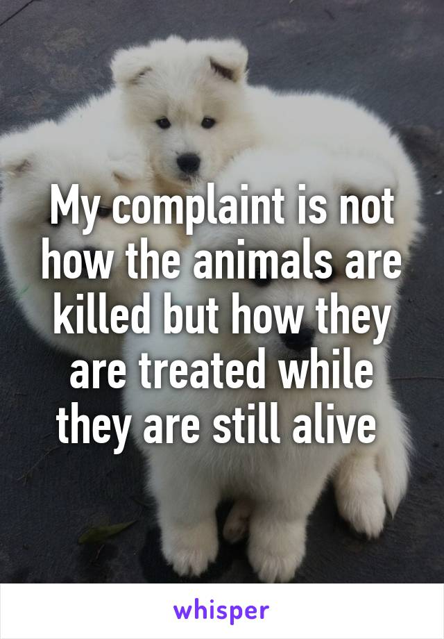 My complaint is not how the animals are killed but how they are treated while they are still alive