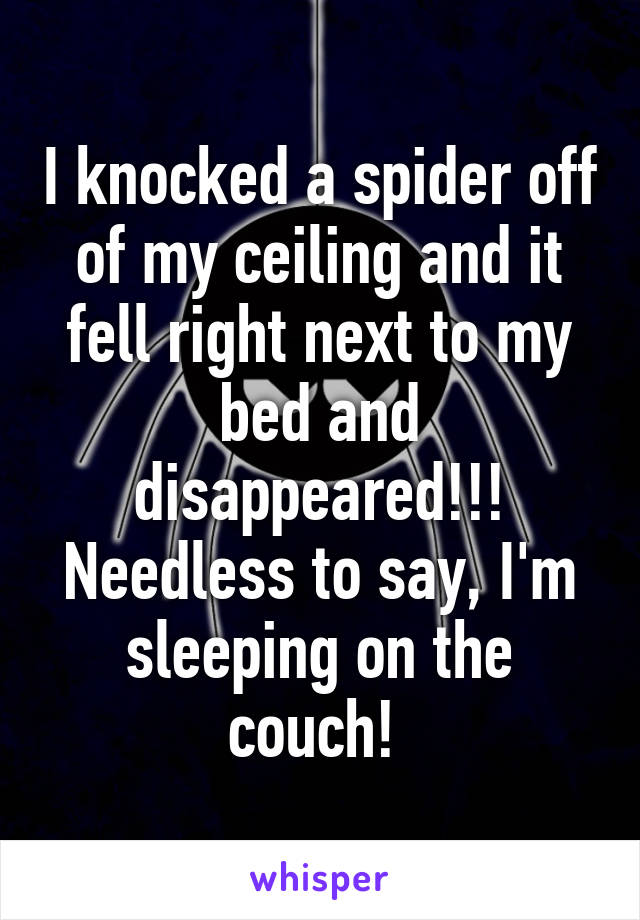 I knocked a spider off of my ceiling and it fell right next to my bed and disappeared!!! Needless to say, I'm sleeping on the couch!