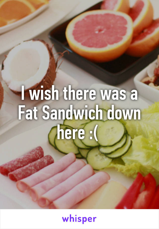 I wish there was a Fat Sandwich down here :(