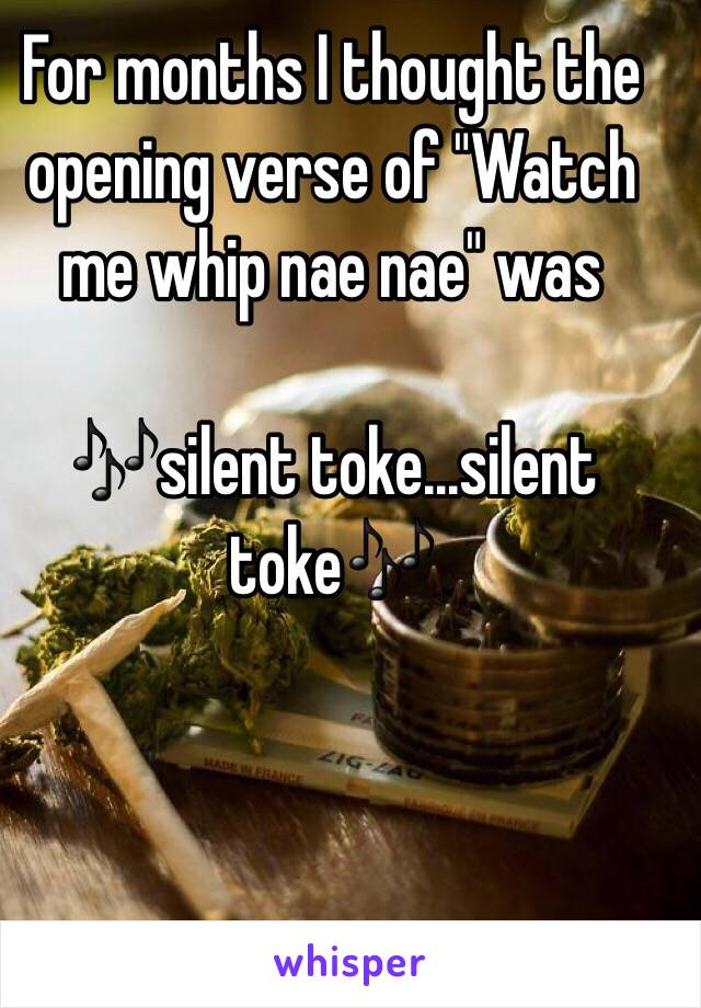 "For months I thought the opening verse of ""Watch me whip nae nae"" was  🎶silent toke...silent toke🎶"