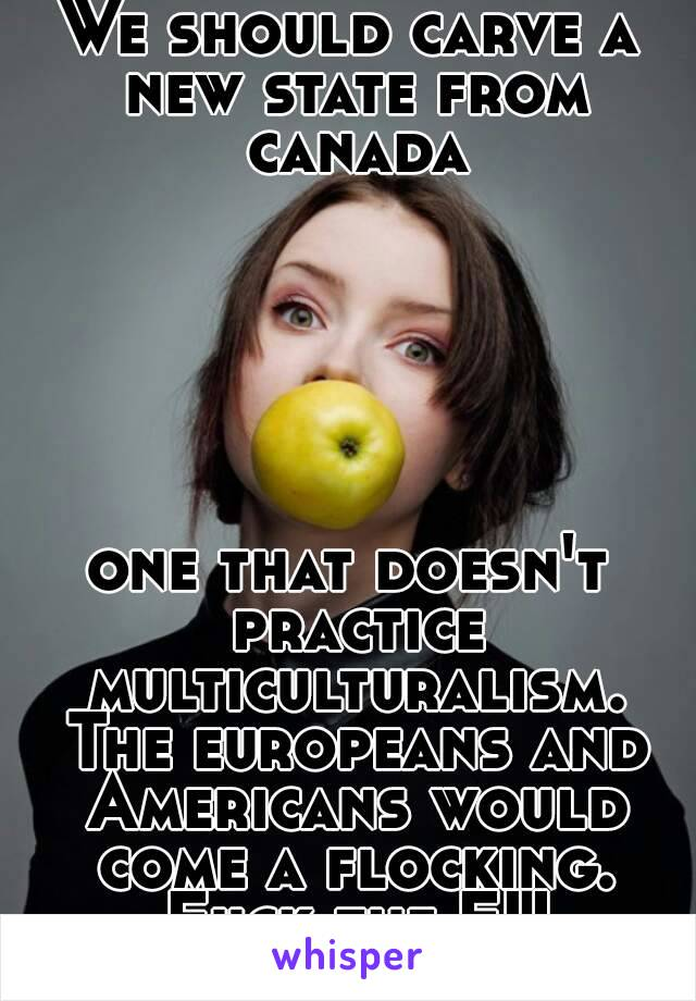 We should carve a new state from canada       one that doesn't practice multiculturalism. The europeans and Americans would come a flocking. Fuck the EU