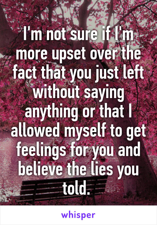 I'm not sure if I'm more upset over the fact that you just left without saying anything or that I allowed myself to get feelings for you and believe the lies you told.