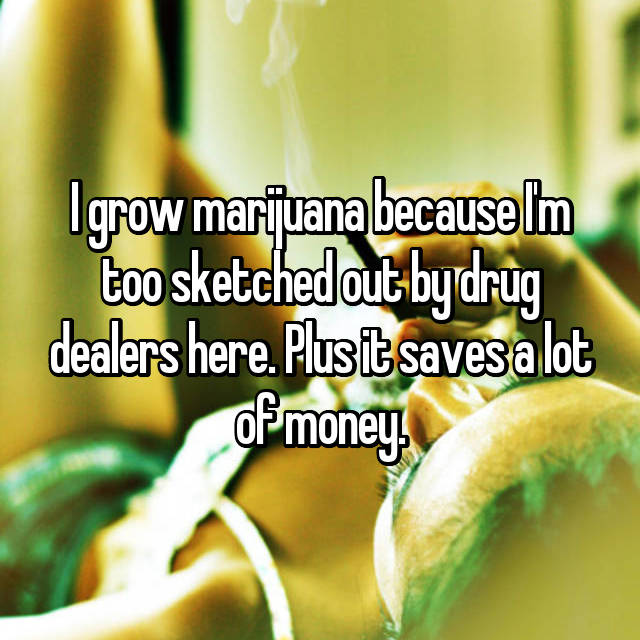 I grow marijuana because I'm too sketched out by drug dealers here. Plus it saves a lot of money.
