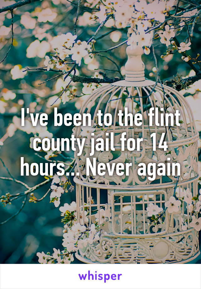 I've been to the flint county jail for 14 hours... Never again