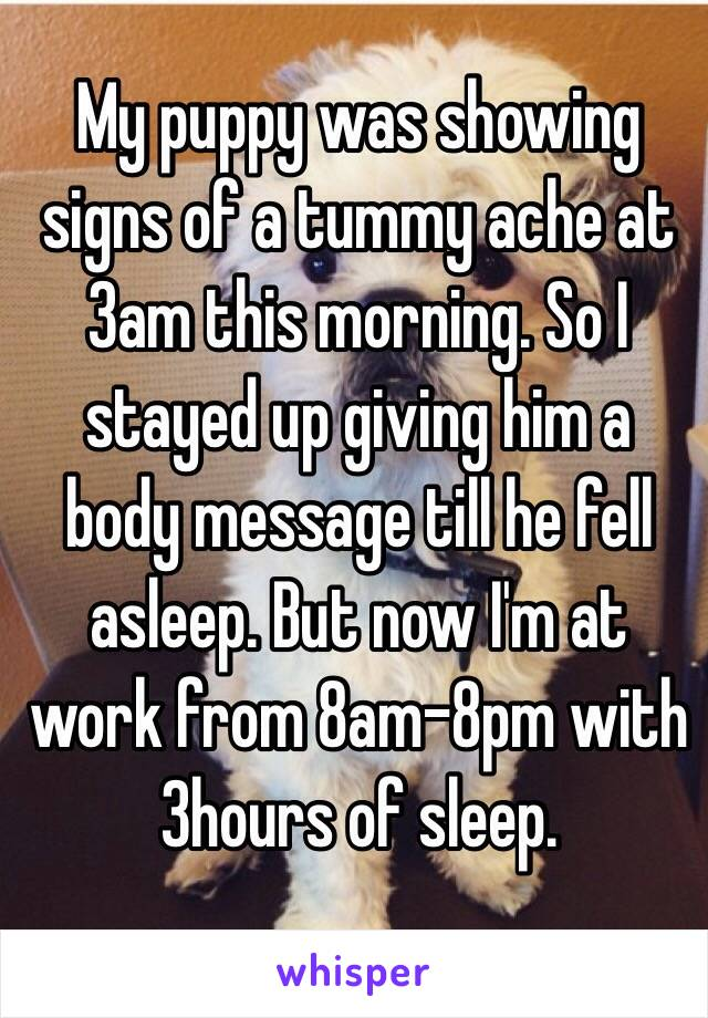 My puppy was showing signs of a tummy ache at 3am this morning. So I stayed up giving him a body message till he fell asleep. But now I'm at work from 8am-8pm with 3hours of sleep.