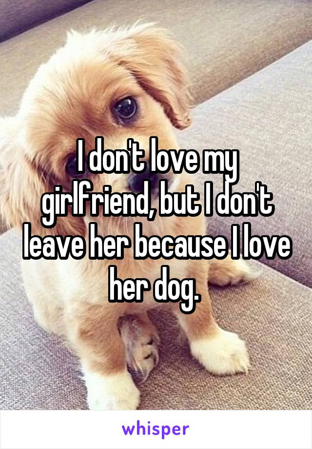 I don't love my girlfriend, but I don't leave her because I love her dog.
