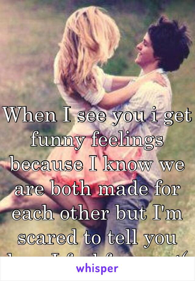 When I see you i get funny feelings because I know we are both made for each other but I'm scared to tell you how I feel for you :(