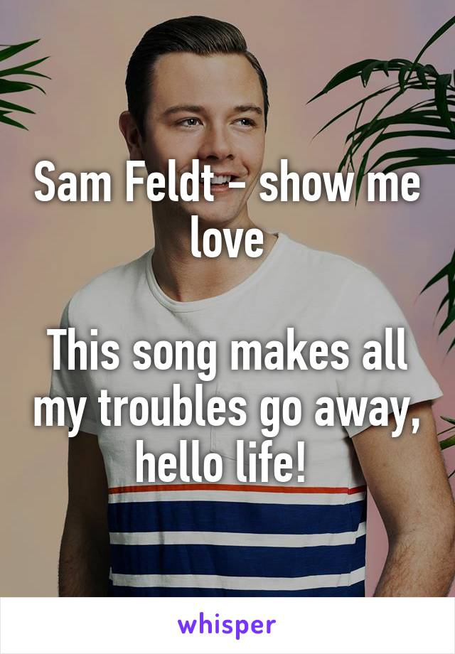 Sam Feldt - show me love  This song makes all my troubles go away, hello life!